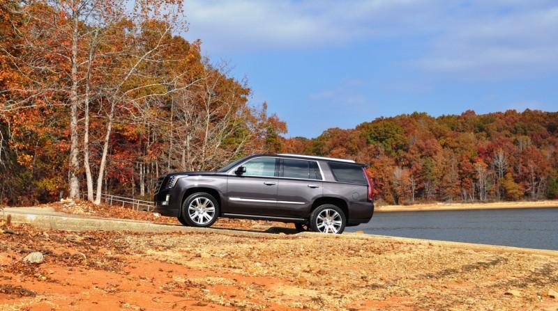2015 Cadillac Escalade Luxury AWD 10