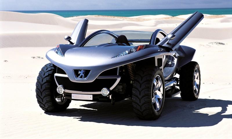 2003 Peugeot Hoggar 16