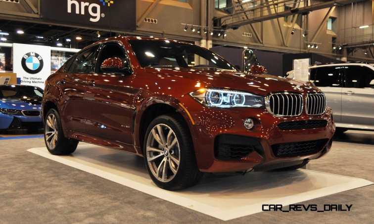 2015 BMW X6 xDrive50i 19