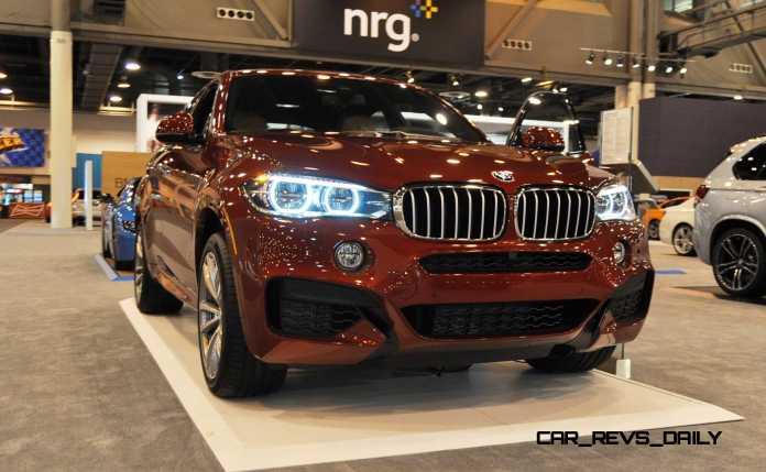 2015 BMW X6 xDrive50i 21