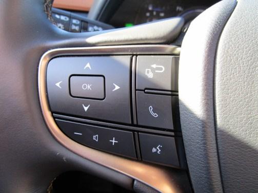 2019 Lexus UX 250h Hybrid (9)
