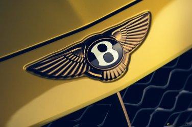 Bentley Mulliner Bacalar - 21 (1)