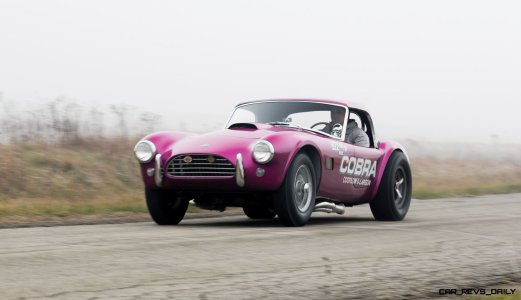 RM Arizona 2016 - 1963 Shelby 289 Cobra DRAGONSNAKE 20