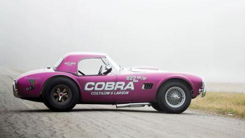 RM Arizona 2016 - 1963 Shelby 289 Cobra DRAGONSNAKE 5