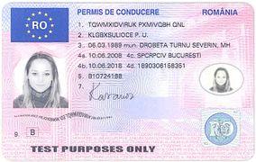 loi permis de conduire