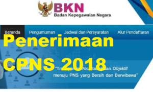Cara Daftar CPNS 2018 Lulusan SMA D3 S1 Daerah Provinsi Aceh