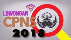 Pengumuman Pendaftaran CPNS Banjarmasin 2018 Lulusan SMA D3 S1