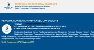 Pengumuman Hasil Tes Kompetensi Dasar SKD CPNS Bappenas 2018