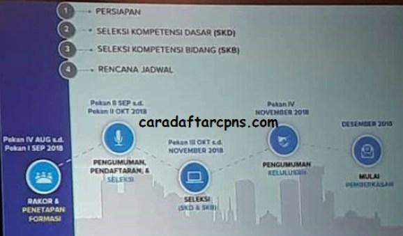 Rincian Total Formasi CPNS 2018 Pusat dan Daerah