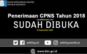 Formasi CPNS 2019 Kemenkes