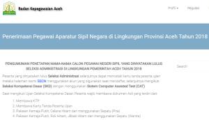 Hasil Tes SKB CPNS Provinsi Aceh 2018 Lulus Wawancara Psikotes
