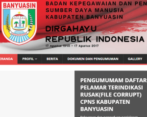 Pengumuman Hasil Tes SKD CPNS Kabupaten Banyuasin 2018