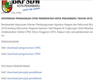Pengumuman Hasil Tes SKD CPNS Kota Pekanbaru 2018