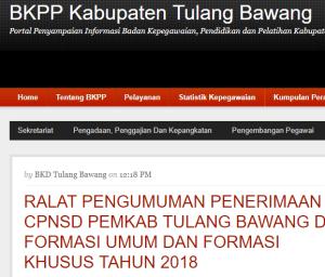 Hasil Seleksi Administrasi CPNS Kabupaten Tulang Bawang 2018
