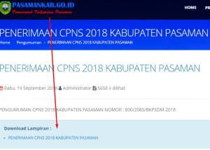 Pengumuman Hasil Tes SKD CPNS Kabupaten Pasaman 2018