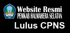 Pengumuman Hasil Tes SKD CPNS 2018 Kabupaten Halmahera Selatan