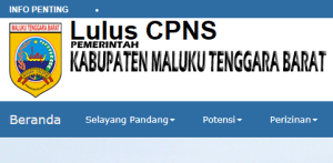 Pengumuman Hasil Tes SKD CPNS 2018 Kabupaten Maluku Tenggara Barat