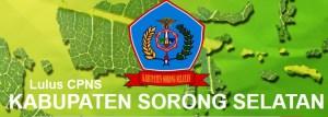 Pengumuman Hasil Tes SKD CPNS 2018 Kabupaten Sorong Selatan
