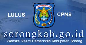 Pengumuman Hasil SKD SKB CPNS Kab Sorong 2019 2020