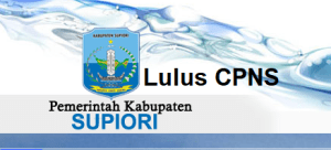 Pengumuman Hasil Tes SKD CPNS 2018 Kabupaten Supiori