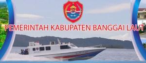 CPNS 2019 Kabupaten Banggai Laut