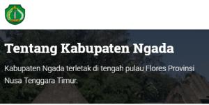 Pengumuman CPNS Kabupaten Ngada 2021 Lulusan SMA SMK D3 S1 S2