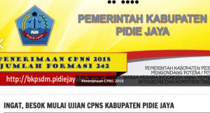 Pengumuman Hasil Tes SKD CPNS Kabupaten Pidie Jaya 2018