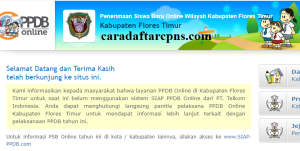 PPDB SMP Kabupaten Flores Timur