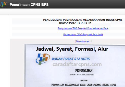 Pengumuman SKD CPNS BPS 2021