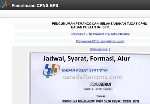 Jadwal dan syarat pendaftaran CPNS BPS 2021