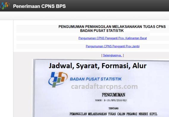 Hasil Seleksi Administrasi CPNS BPS 2021