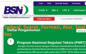 Pengumuman Hasil SKB CPNS BSN Formasi 2019