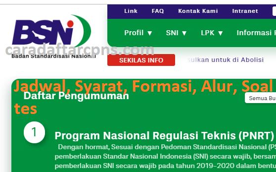 Hasil Seleksi Administrasi CPNS BSN 2021