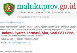 Pengumuman Hasil SKB CPNS Pemprov Maluku Formasi 2019