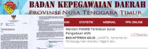 Pengumuman Hasil SKB CPNS Pemprov NTT Formasi 2019