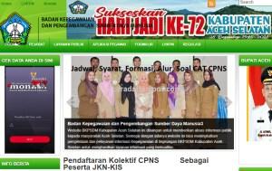 CPNS 2019 Kabupaten Aceh Selatan