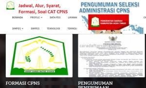 CPNS 2019 Kabupaten Aceh Timur