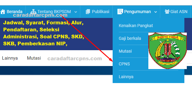 Cpns 2019 Kabupaten Barito Timur Info Jadwal Syarat Pendaftaran