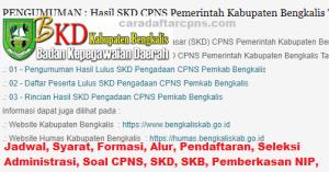 CPNS 2019 Kabupaten Bengkalis