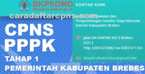 Pengumuman Hasil SKB CPNS Kabupaten Brebes Formasi 2019