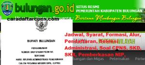Pengumuman CPNS Kabupaten Bulungan 2021 Lulusan SMA SMK D3 S1 S2