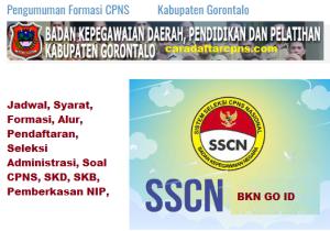 Pengumuman CPNS Kabupaten Gorontalo 2021 Lulusan SMA SMK D3 S1 S2