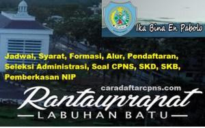 Pengumuman Hasil SKB CPNS Kabupaten Labuhanbatu Formasi 2019