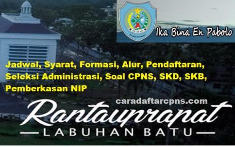 Jadwal Pendaftaran CPNS Kabupaten Labuhanbatu 2021 Lulusan SMA SMK D3 S1 S2