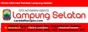CPNS 2019 Kab Lamsel