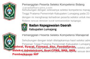 Jadwal SKB CPNS Kabupaten Lumajang 2019 2020