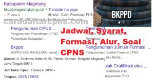 Pengumuman Hasil SKB CPNS Kabupaten Magelang Formasi 2019
