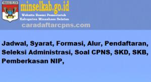 CPNS 2019 Kabupaten Minahasa Selatan