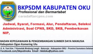Jadwal SKB CPNS Kabupaten OKU 2019 2020