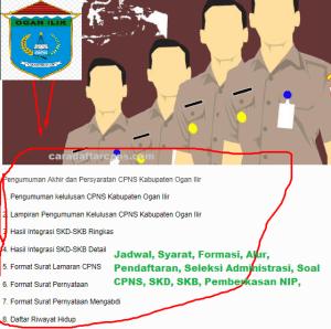Hasil SKD SKB CPNS Kab Ogan Ilir 2019 2020